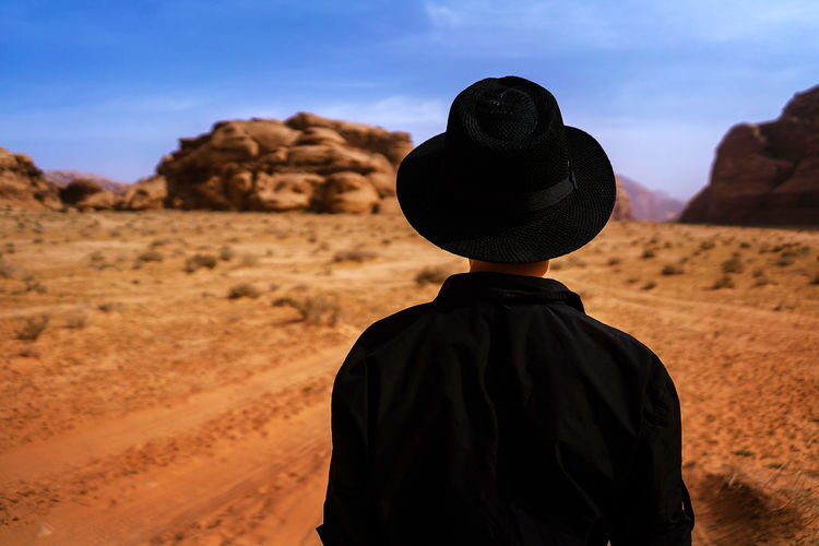 Rear view of person standing in desert