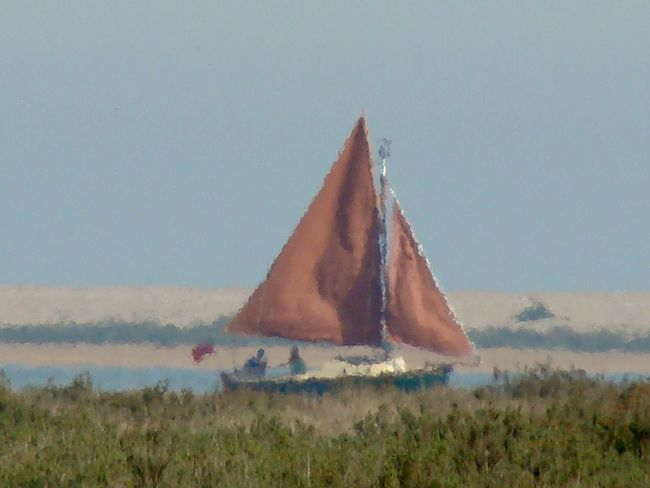 sailing boat at Blakeney in shimmering heat haze Blakeney Day England🇬🇧 Grass Green Heat Haze Nature Norfolk Outdoors Red Sails Sailing Boat On Lake Sky Two People Sailing