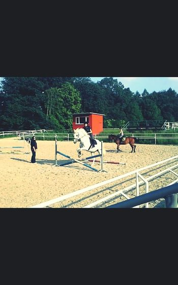 "Trening With My Horse ""-*"