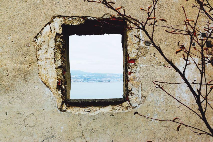 Marseille Marseillecartepostale Marseillerebelle Window NewYearsDay