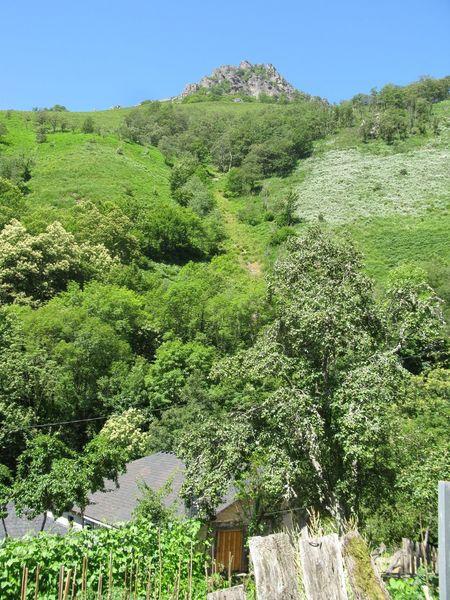 Great Views Green Green Color Green Green Green!  Landscape #Nature #photography Landscape_Collection Landscape_photography Landscapes Tranquil Scene Tranquility