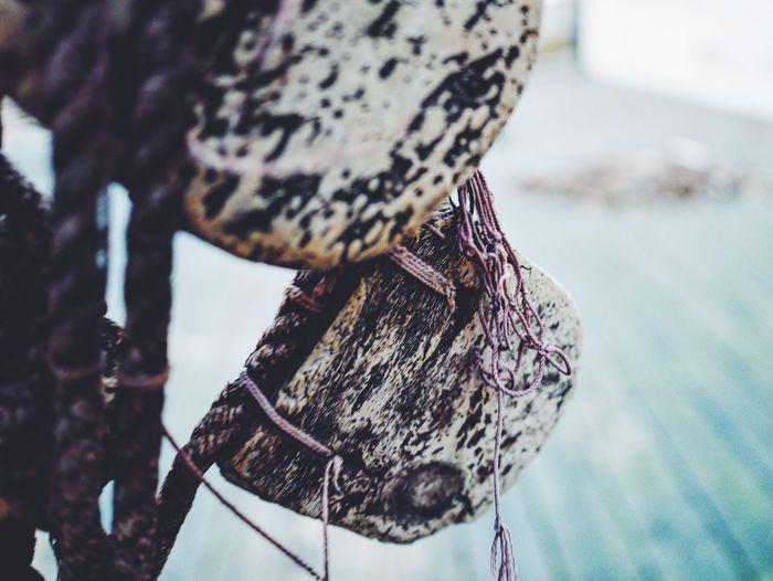 Close-Up Of Abandoned Fishing Net Corks