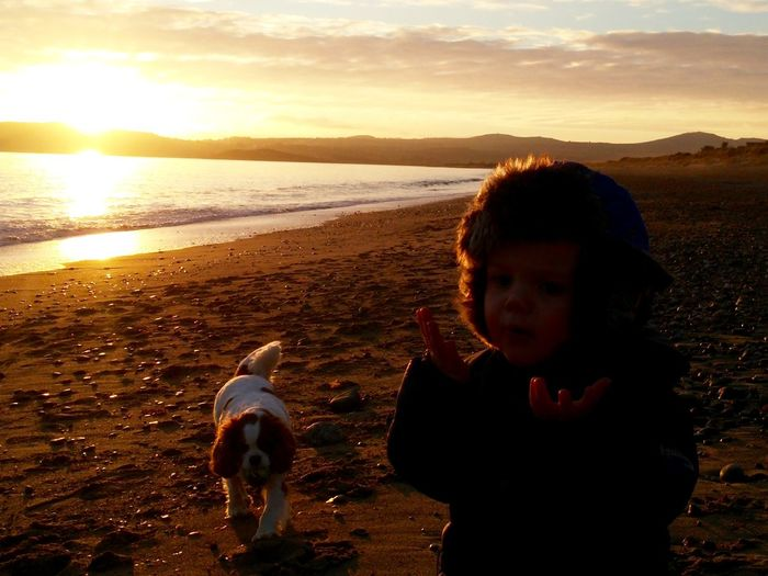 Youth Of Today Boyandhisdog Cavalier King Charles Spaniel Sunset Beach Life Bestfriend Dog Love Showcase: February Northwales Pwllheli Winter Beach Allroadsleadtothebeach BeautifulWales Life Is A Beach Penllyn Notouristtospoilit Hanging Out Cymru Cardiganbayi Landscapes With WhiteWall Here Belongs To Me