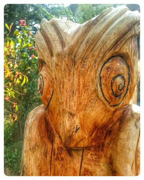 Day No People Outdoors One Animal Tree Close-up Carved Wood Wood Sculpture Alien No Idea Point And Shoot Camera ES75