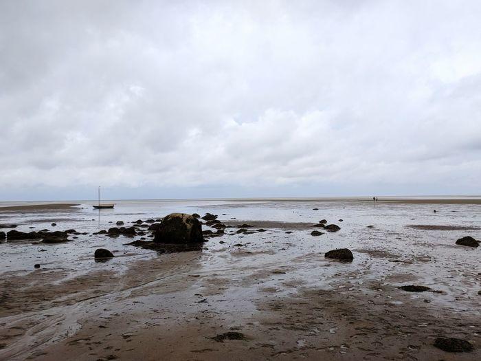 cap cod Water Sea Low Tide Beach Sand Sky Horizon Over Water Landscape Cloud - Sky Coastal Feature Coastline Dramatic Sky