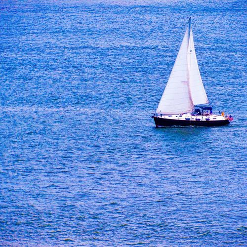 EyeEmNewHere LastSail Sail Boats Water Water Transportation Sea Sailing Sailboat Waterfront Outdoors Rippled Day Nature Beauty In Nature