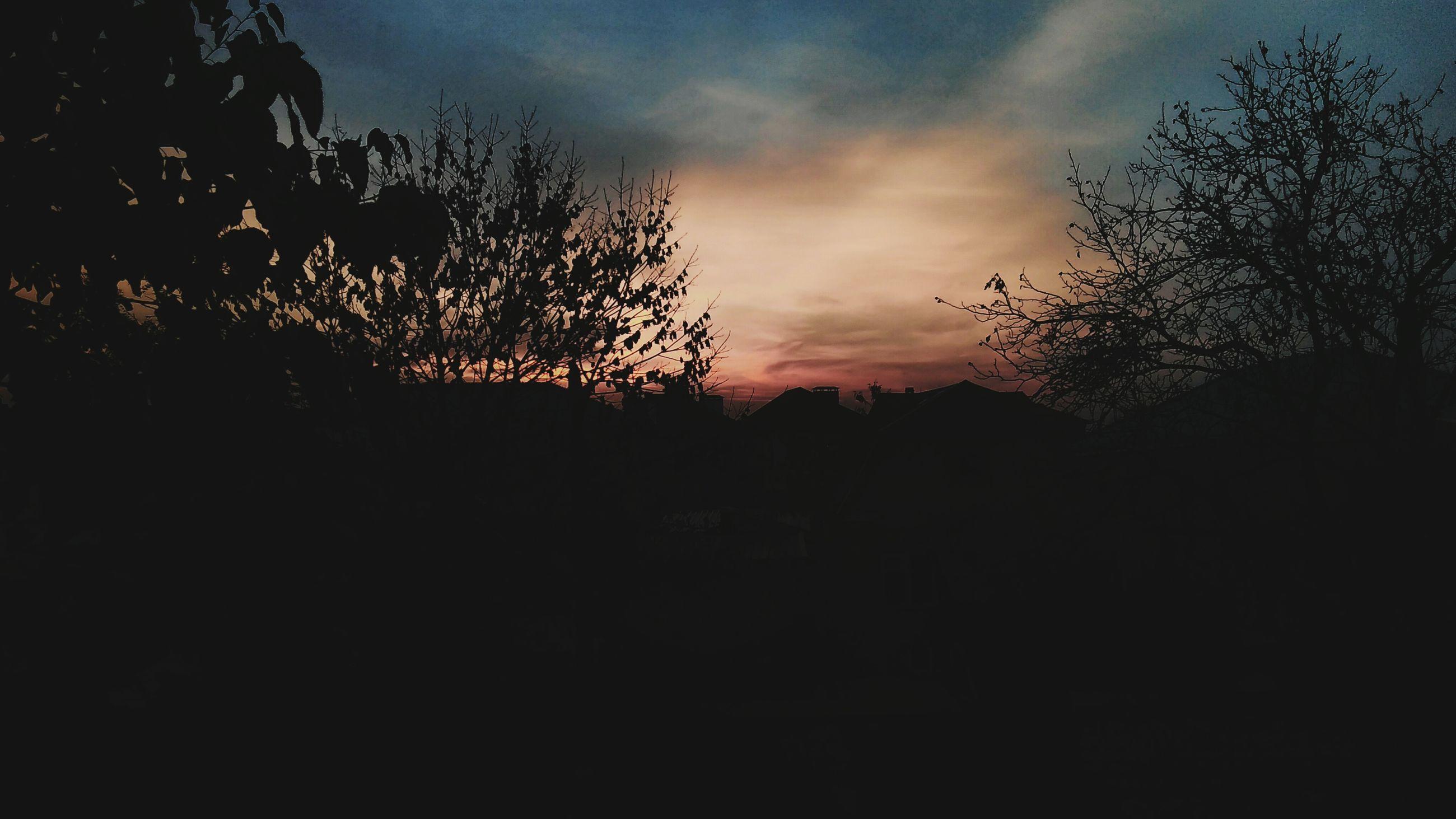 silhouette, sunset, sky, tree, tranquility, tranquil scene, scenics, beauty in nature, nature, cloud - sky, dark, landscape, idyllic, dusk, cloud, outline, orange color, outdoors, non-urban scene, no people