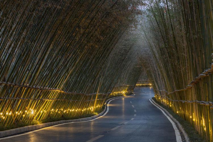 Road passing through bridge