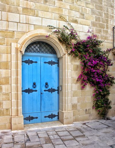 Door Built Structure Building Exterior Closed Architecture Outdoors Day Entrance Blue No People Entryway Entry Closed Door Growth Flower Malta Bright Colors Old Buildings History Historic
