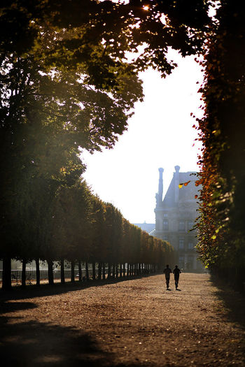 I love to have a morning jog here :) Photography Louvre Musée Du Louvre Paris Travel