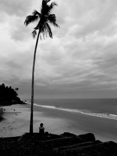 méditation Meditation Place Loneliness Oceanic Sentiment Dream Sea Silhouette Coconut Palm Tree Tranquil Scene