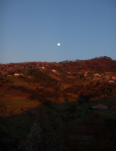 Scenic view of landscape against clear sky at dusk