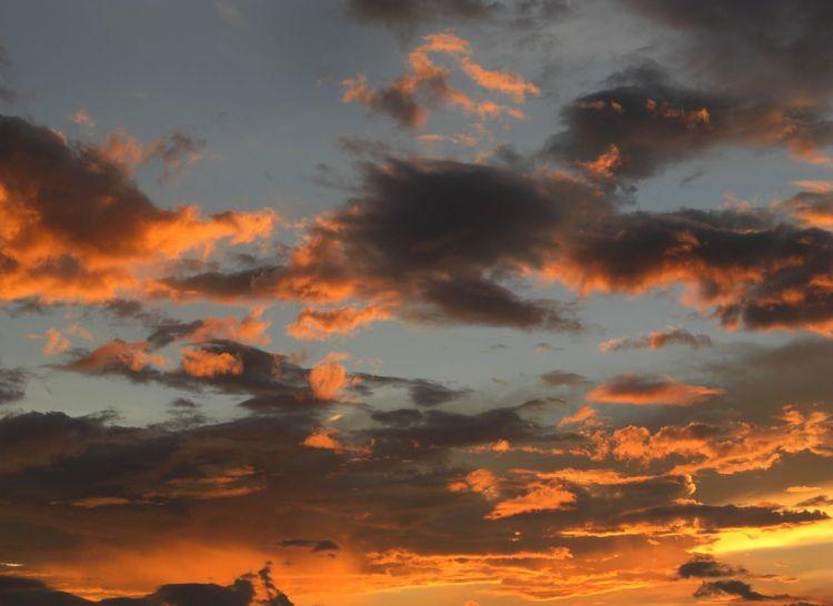 Ciel Coucher De Soleil Crépuscule Orange Color Sky Sunset ゆうやけ