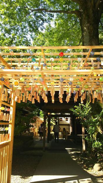 氷川神社風鈴祭り🎐風鈴 Windowbell Japanese Shrine Japanese Culture 氷川神社 川越 Japan