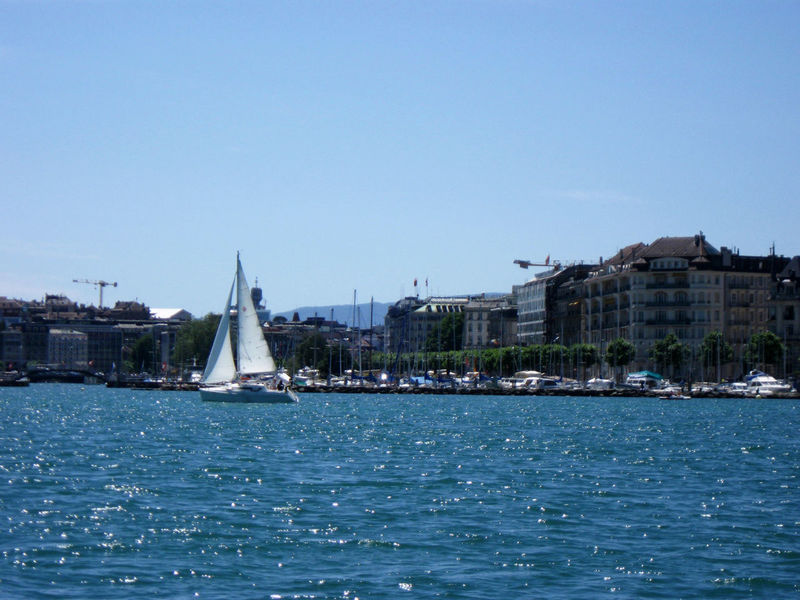 Port de Paquis Boat Clear Sky Going Sailing Lake Lake Geneva Lakeshore Nautical Vessel Pâquis Sailboat Sailing Standing Water Switzerland Water Waterfront