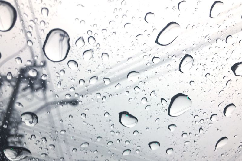 Raining Drop Water Transparent Wet Window Backgrounds Rain Full Frame Purity RainDrop Abstract Nature Liquid No People Close-up Shiny Freshness Indoors  Day