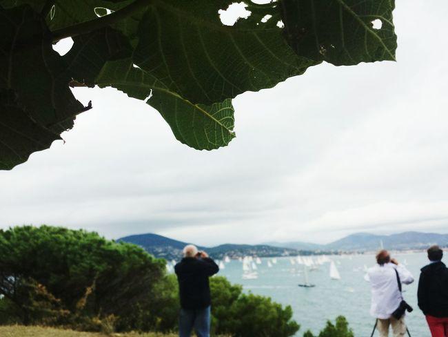 Sainttropez Saint Tropez Costaazzurra Costaazul Cotedazur Mer Mare Sea View Sea Panorama