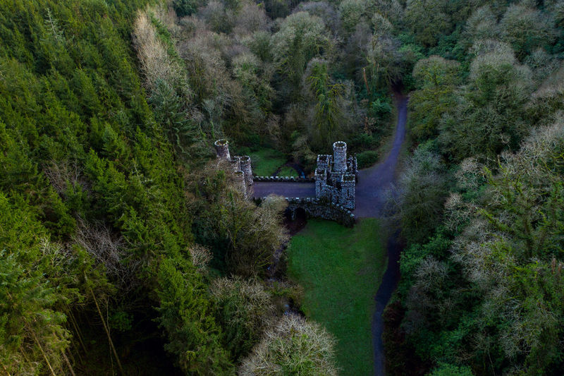 Plant Tree Green Color No People Forest Architecture Nature Transportation Built Structure High Angle View Day Outdoors Bridge Environment Drone  Dronephotography Ruins Ruin Old Crossing Old Ruin Past History