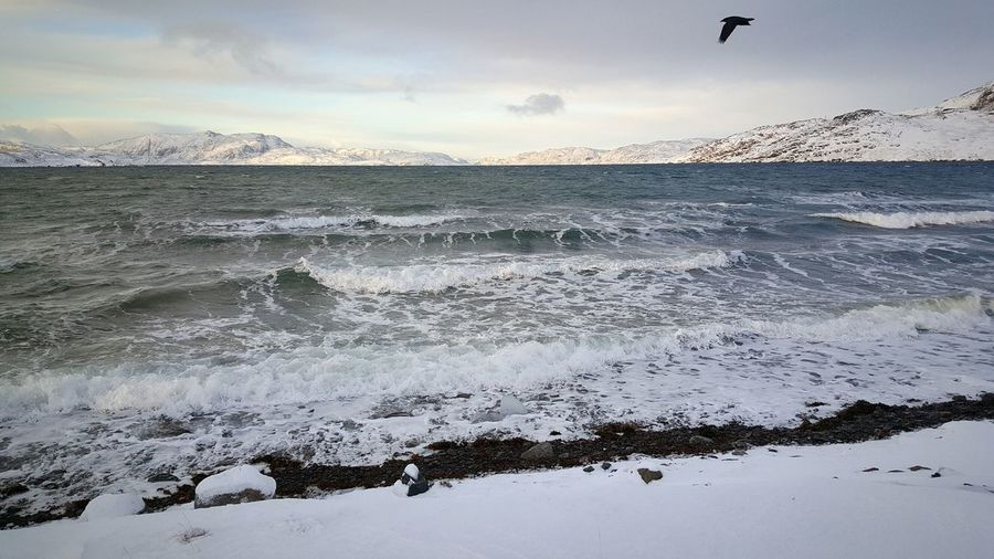 Narsaq Greenland Kalaallitnunaat Southgreenland Snowstorm Ilovewhereilive Peacefulplace Relaxingview Wheretorelax Snowyplace Inastormyweather Classicwintersday Freshairtoinhale Haveagreatchristmaseveryone Eyeemtosee Sea Beach Water Wave Beauty In Nature No People Travel Destinations KommuneKujalleq Ilovegreenland December2016