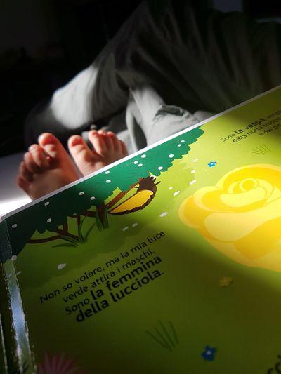 Little Feet Reading A Novel relax food night