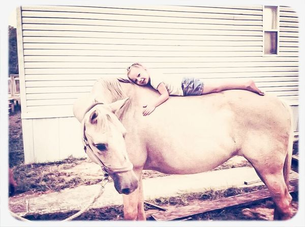 """my moms horse """"baby"""" getting luvins from Kimberleigh Horse Riding Little Girls And Their Horses"""