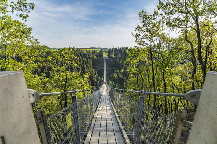 Geierlay, view to a large suspension bridge Hiking Nature Path Adventure Beauty In Nature Bridge Bridge - Man Made Structure Connection Day Footbridge Forest Geielay Nature No People Outdoor Outdoors Railing Scenics Sky Skyscraper Suspension Bridge The Way Forward Tourism Tree Valley