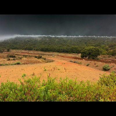 الضباب والمطر عناق لايمل  السوده @iaseeer @iabha Iaseeer Hesabatjnobia Abha تصويري