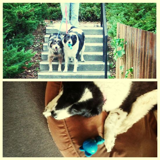 """Thiesson and her """"Bluebaby"""" circa 2007 and 2013 refound. now she won't put it down."""