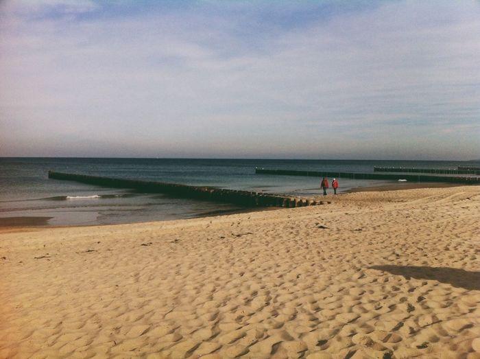 Beach Sea Autumn