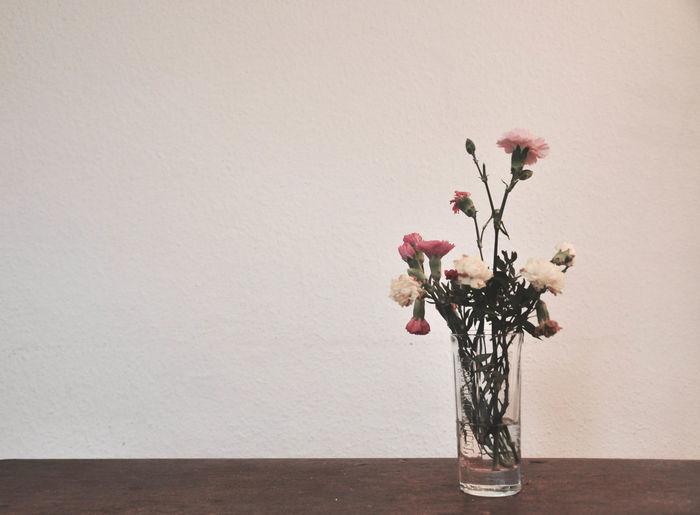 Decoration Elégance Flower Home Interior Indoors  Springtime Still Life Table White Background