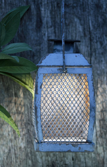 Solar Lamp Laterne Sage Sagebrush Lamp Plant Hanging No People Plant Part Nature Leaf Close-up Day Wall - Building Feature Focus On Foreground Tree Growth Metal Wood - Material Outdoors Birdhouse Beauty In Nature Branch Green Color Textured