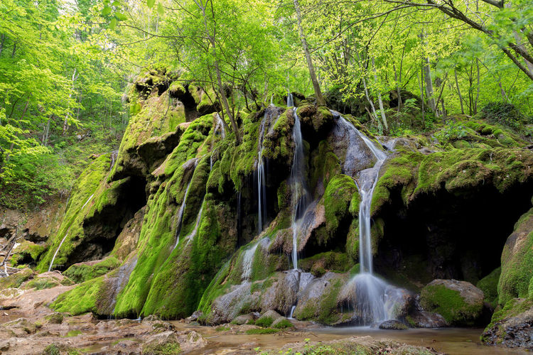 Beautiful waterfall, in Caras Severin County, Romania Green Nature Romania Beauty In Nature Beusnita Bigar Day Fall Forest Landscape Motion Nature Outdoors River Scenics Streamzoofamily Tree Water Waterfall Waterfalls