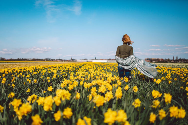 Rear view of person on sunflower field against sky