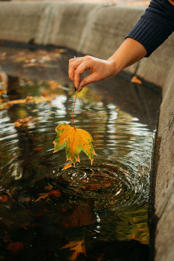 Autumn background, fall its coming, hello autumn, things to come, beautiful fall. female hand