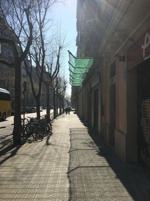 Architecture Building Building Exterior Built Structure City Day Diminishing Perspective Direction Footpath Outdoors Shadow Street Sunlight The Way Forward Tree Treelined