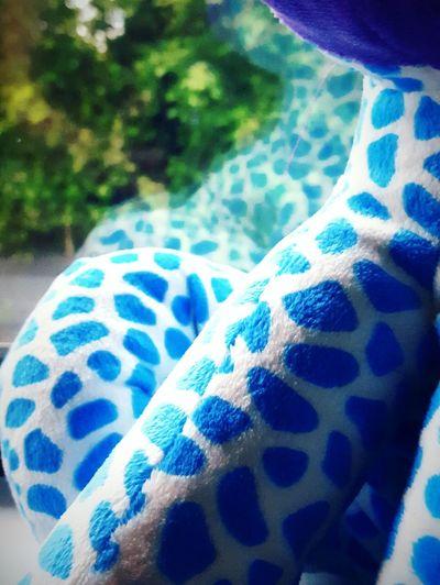 Thinks100 day 30. Blue Reflection Window Things On A Window Sill Window Sill Giraffe Cuddly Toy Milliestrust