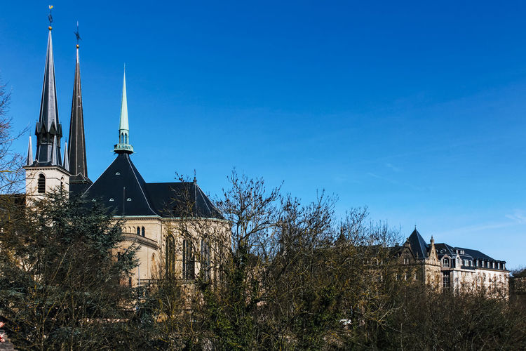 Built Structure Building Exterior Architecture Building Sky Tree Religion Blue No People Place Of Worship Clear Sky Nature Tower Plant Low Angle View Day Belief Spirituality Copy Space Spire  Outdoors Luxembourg Church Cathedral
