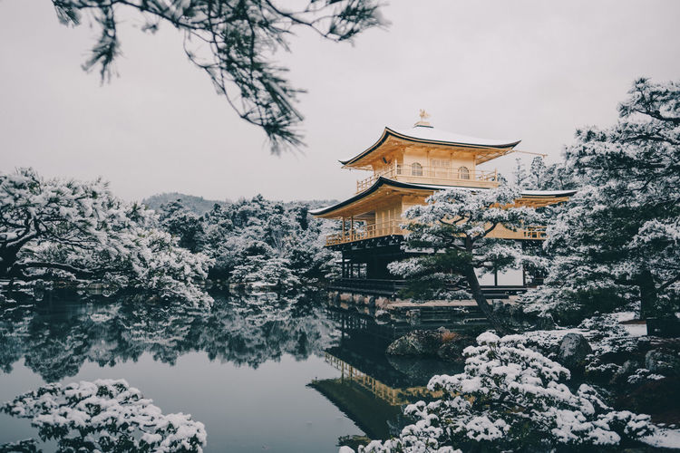 Kinkakuji Temple in winter // IG: @taromoberly Snow Covered Travel Photography Travel Travel Destinations Tranquility Calm Nature Reflection Pond Kyoto, Japan Kyoto Snow Winter Gold Colored Japan Scenery Japan Photography Japan Temple Golden Pavilion  Kinkakuji