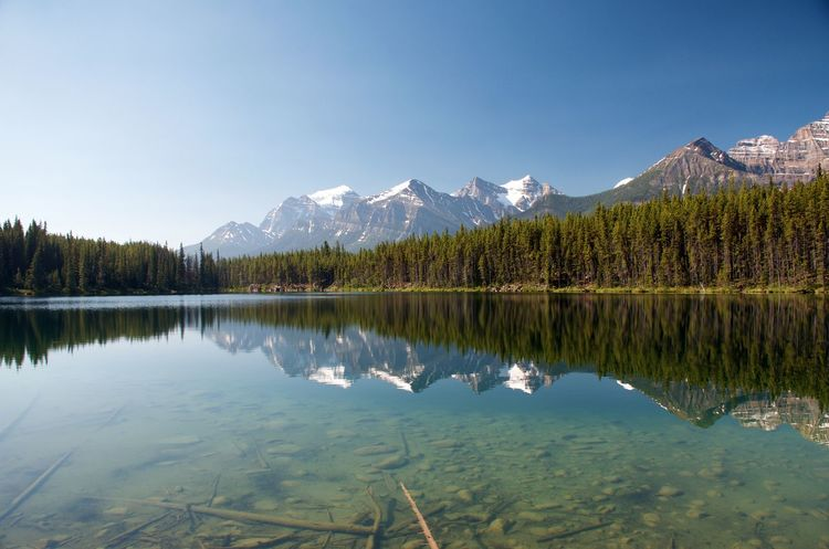 Adventures Banff National Park  Canadian Rockies  Hiking Reflection Of Trees And Mountains On Water Crystal Clear Waters Glacial Lake Lake Reflection Landscape Mountain Range Paradise Peaceful Reflection In The Water Tourism Travel Destinations