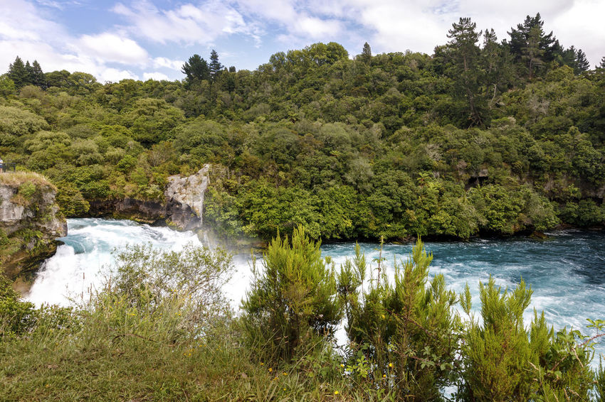 Panoramic view of Huka Falls, New Zealand NZ New Zealand Scenery Beauty In Nature Cloud - Sky Day Environment Flowing Forest Growth Huka Falls Land Nature New Zealand No People Non-urban Scene Outdoors Plant Power In Nature River Scenics - Nature Sky Tranquil Scene Tranquility Tree Water
