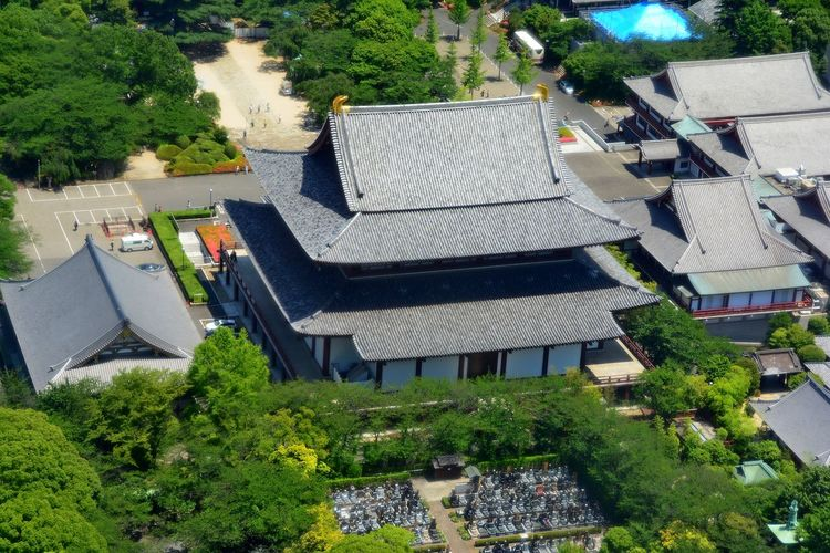Japanese Temple Observation From Tokyo Tower Tokyo,Japan Building Exterior Built Structure Day High Angle View Outdoors Roof Tree