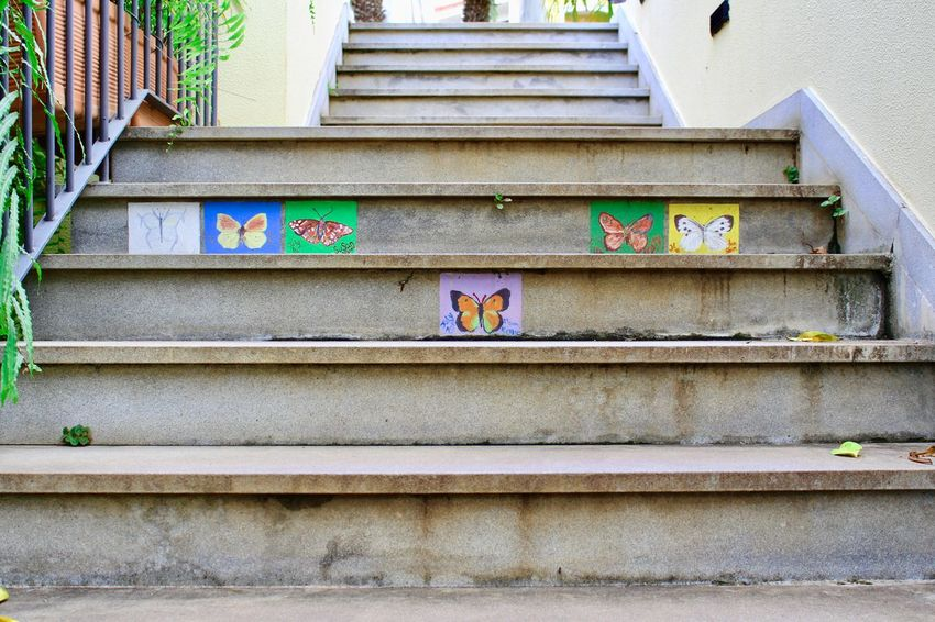 Stairs of Butterflies Stairs Animal Architecture Building Building Exterior Built Structure Butterly Creativity Day Graffiti House Low Angle View Multi Colored No People Outdoors Painting Pattern Railing Staircase Steps And Staircases Wall Wall - Building Feature Window