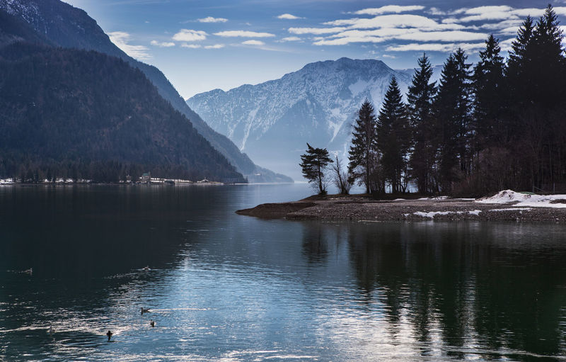 Achensee Austria Achensee Achensee Austria Austria Austria Mountains Austrian Alps Austrianphotographers Mountain Lake Winter Blue Blue Sky Water Scenics - Nature Beauty In Nature Tranquil Scene Tranquility Sky Waterfront Tree Reflection Nature Mountain Range No People Idyllic Outdoors