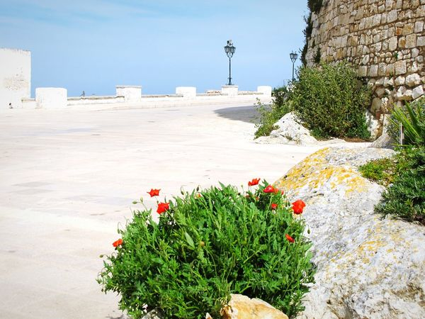 Enjoying Life Puglia2016 Puglia Puglia South Italy Holiday Holiday Trip Seaside_collection City City Life City Lights