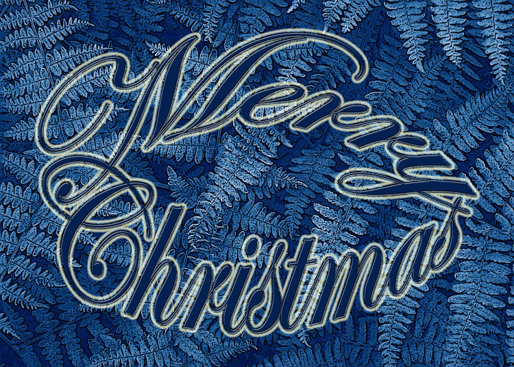 A Christmas greeting, Merry Christmas, is spelled out in blur cursive text (highlighted in white) on top of a photo of ferns, manipulated and colored blue. Art Blue Close-up Cursive Text Design Enhances Ferenstext Holiday Manipulated Merry Christmas Monochrome Pattern