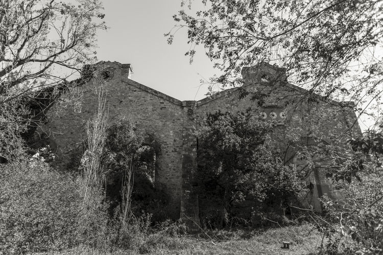 freight train station Architecture Arquitecture Past Ruins Abandoned Abandoned Buildings Architecture Arquitectura Building Building Exterior Built Structure Damaged Day Deterioration Grinding Growth History No People Obsolete Old Ruins Architecture Ruins_photography Train Train Station Tree