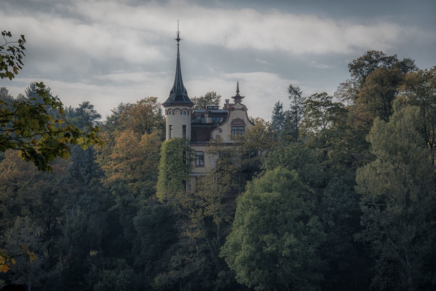 Schloss Gattersburg Autumn Bewitched Castle Dream Enchanted  Fable Fairy Tale Forrest Fortress Hotel Myth Mythical Princess Schloss Gattersburg View