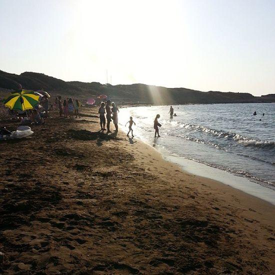 Alagadi Kyrenia Turtlebeach Turtle summer cyprus 2013 holiday