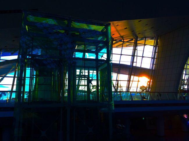 仁川国際空港は、ガラス張りのエリアが多くて、かなり明るい。始発便なのに結構混み合ってる。そのまま仕事に行く人が多いんだろうね。 Train Station Airport Korea 韓国 EyeEm Korea Sunrise Silhouette Sunrise 国際空港 仁川 Good Morning Light And Shadow