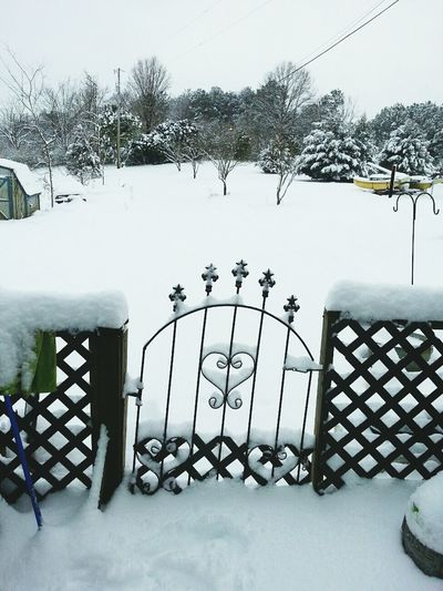 snow Snow Cold